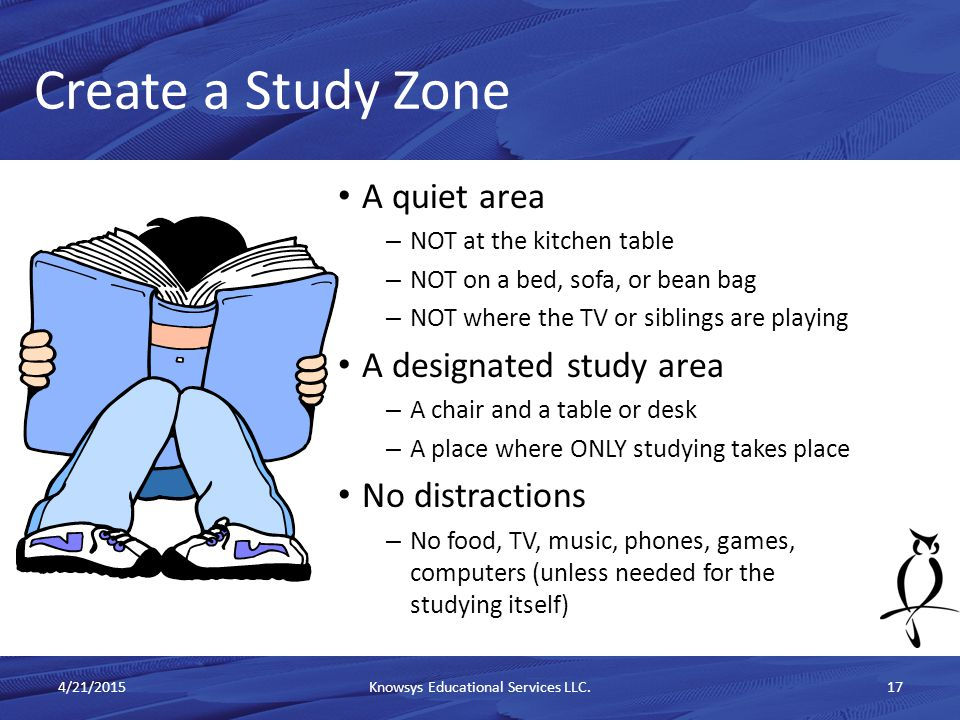 A quiet area – NOT at the kitchen table – NOT on a bed, sofa, or bean bag – NOT where the TV or siblings are playing A designated study area – A chair