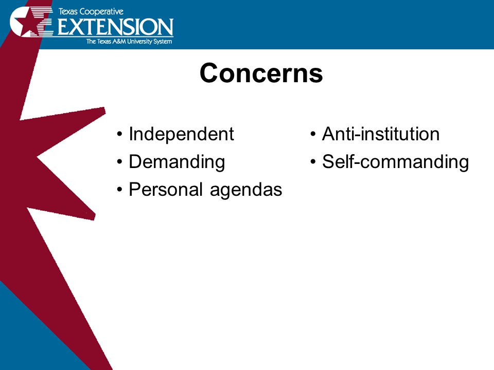 Concerns Independent Demanding Personal agendas Anti-institution Self-commanding