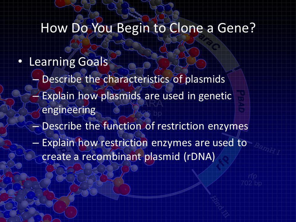 How Do You Begin to Clone a Gene.