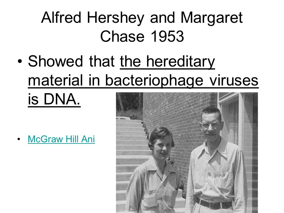 Alfred Hershey and Margaret Chase 1953 Showed that the hereditary material in bacteriophage viruses is DNA.