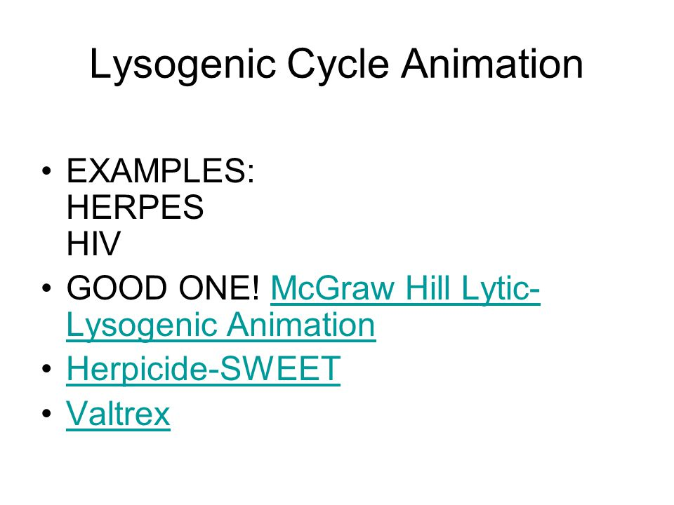 Lysogenic Cycle Animation EXAMPLES: HERPES HIV GOOD ONE.