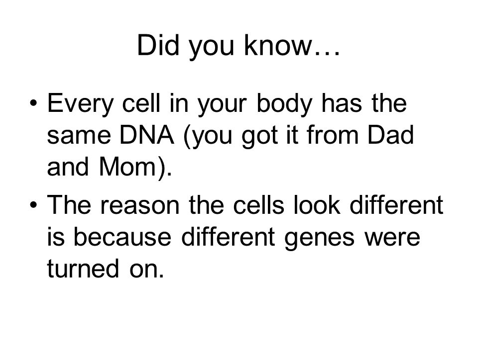 Did you know… Every cell in your body has the same DNA (you got it from Dad and Mom).