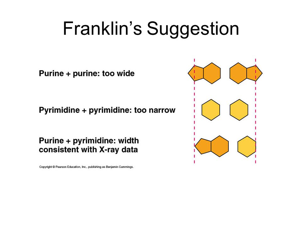 Franklin's Suggestion
