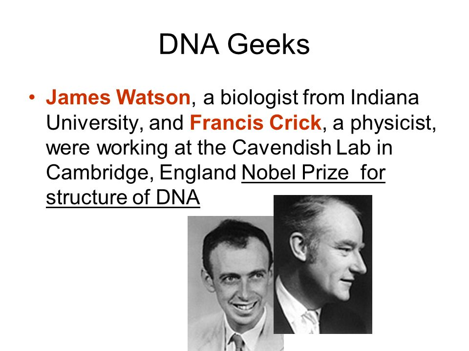 DNA Geeks James Watson, a biologist from Indiana University, and Francis Crick, a physicist, were working at the Cavendish Lab in Cambridge, England Nobel Prize for structure of DNA