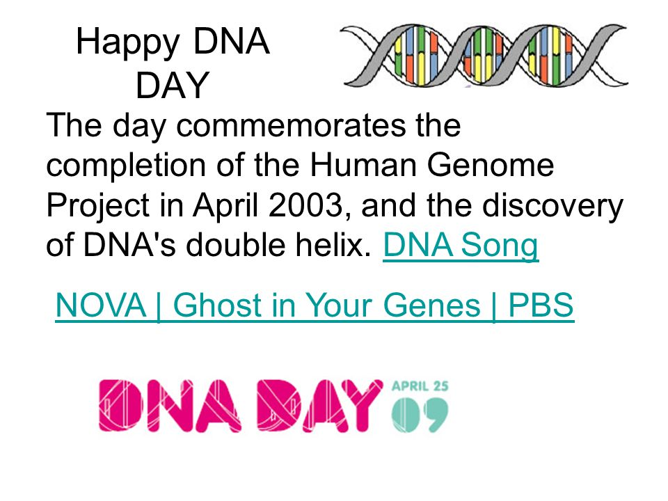 Happy DNA DAY The day commemorates the completion of the Human Genome Project in April 2003, and the discovery of DNA s double helix.