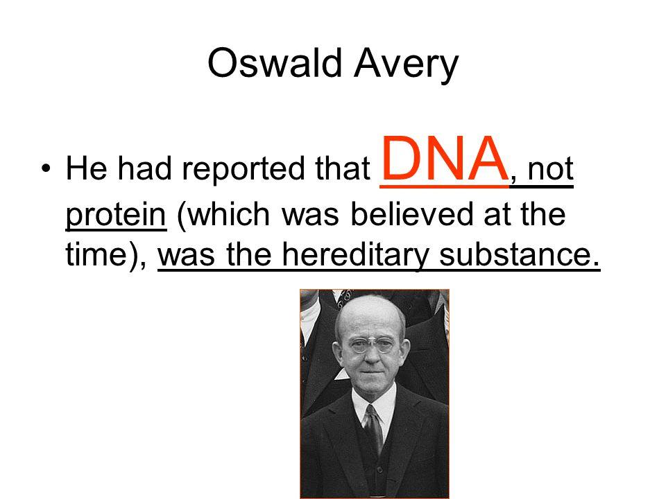 DNA Bases