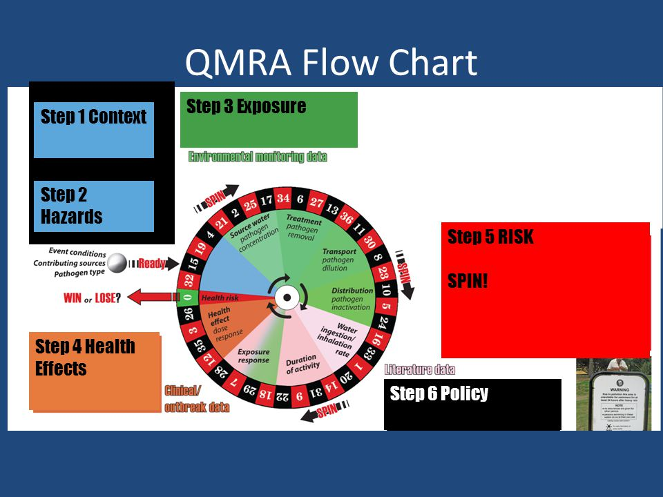 QMRA Flow Chart Step 3 Exposure Step 1 Context Step 2 Hazards Step 4 Health Effects Step 5 RISK SPIN.
