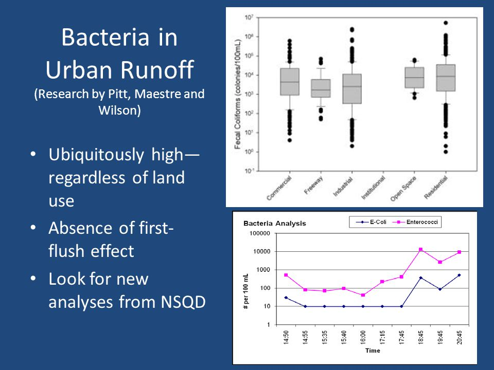 Bacteria in Urban Runoff (Research by Pitt, Maestre and Wilson) Ubiquitously high— regardless of land use Absence of first- flush effect Look for new analyses from NSQD