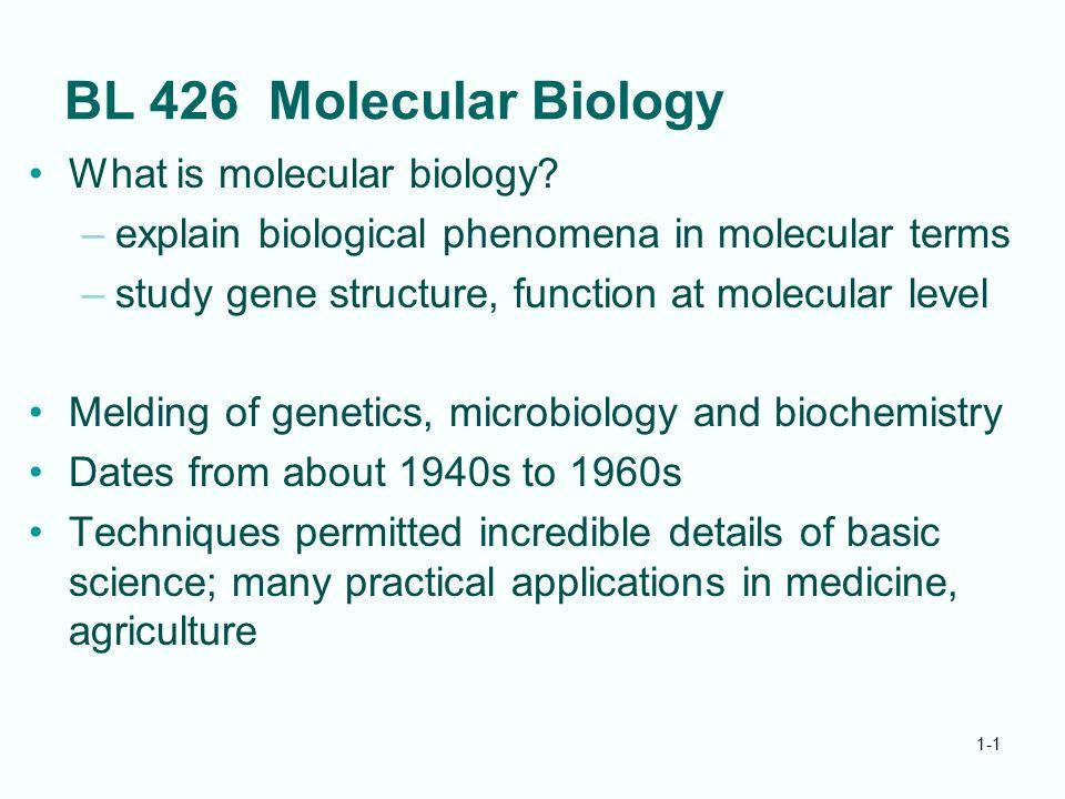 1-1 BL 426 Molecular Biology What is molecular biology? –explain biological phenomena in molecular terms –study gene structure, function at molecular