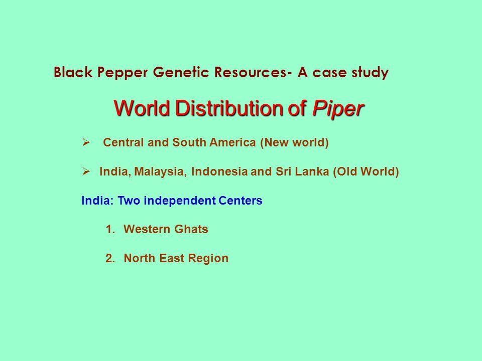 World Distribution of Piper  Central and South America (New world)  India, Malaysia, Indonesia and Sri Lanka (Old World) India: Two independent Centers 1.Western Ghats 2.