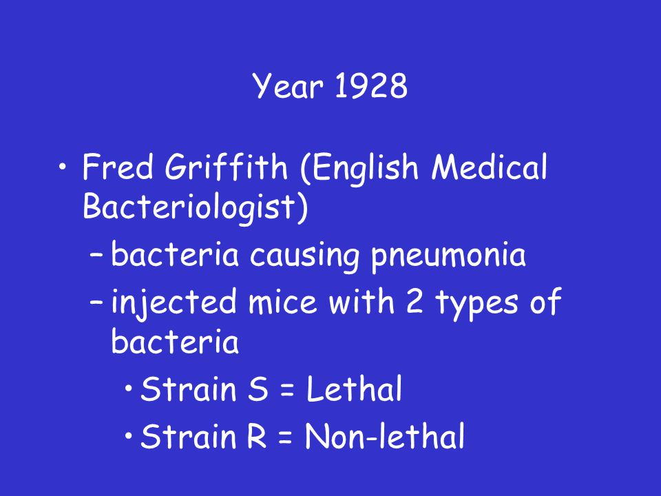 Year 1928 Fred Griffith (English Medical Bacteriologist) –bacteria causing pneumonia –injected mice with 2 types of bacteria Strain S = Lethal Strain R = Non-lethal