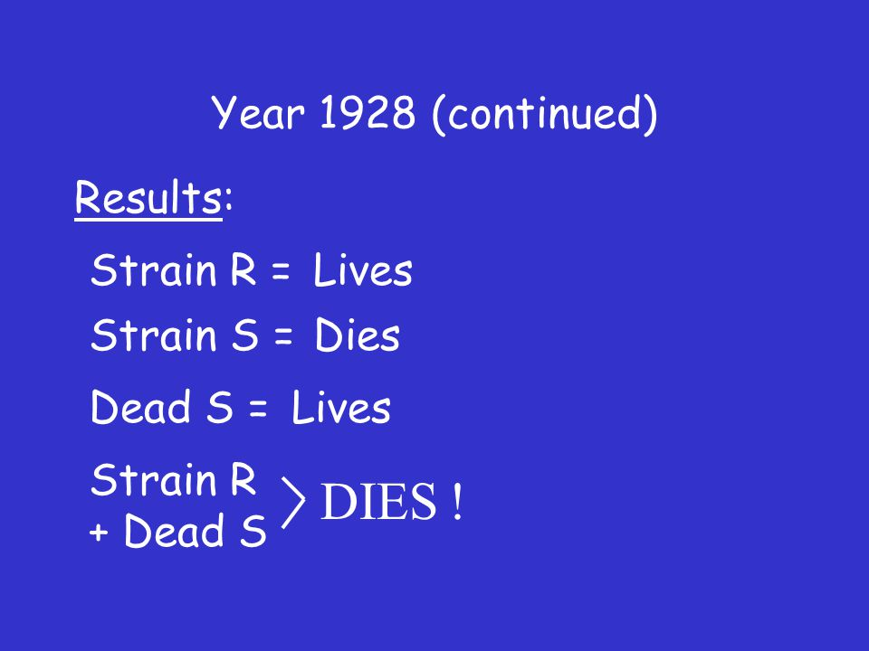 Year 1928 (continued) Results: Lives Dies Lives DIES .