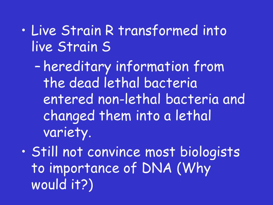 Live Strain R transformed into live Strain S –hereditary information from the dead lethal bacteria entered non-lethal bacteria and changed them into a lethal variety.