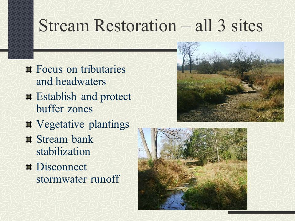 Stream Restoration – all 3 sites Focus on tributaries and headwaters Establish and protect buffer zones Vegetative plantings Stream bank stabilization Disconnect stormwater runoff