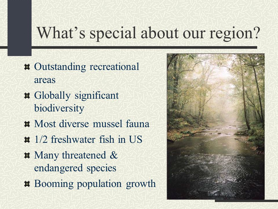 What's special about our region.