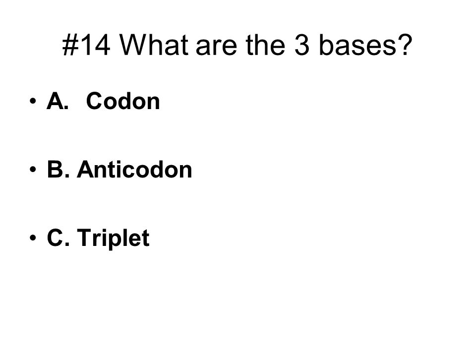 #14 What are the 3 bases? A. Codon B. Anticodon C. Triplet