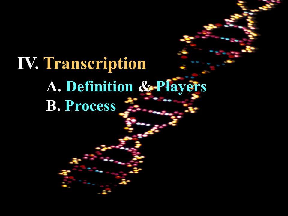 IV. Transcription A. Definition & Players B. Process