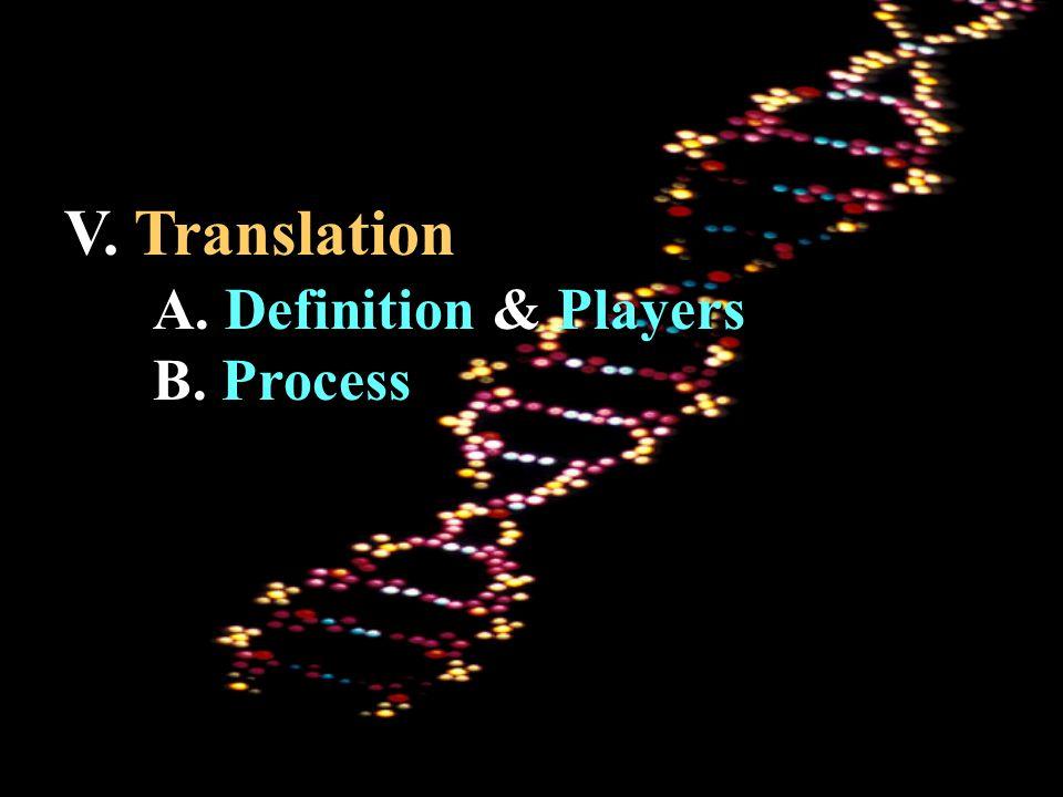 V. Translation A. Definition & Players B. Process