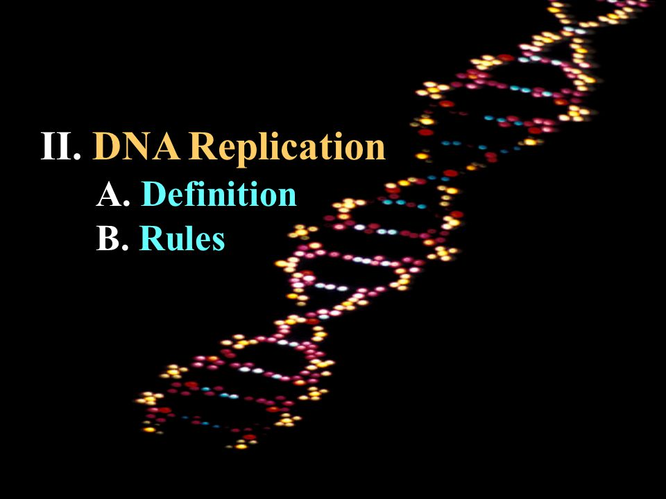 II. DNA Replication A. Definition B. Rules