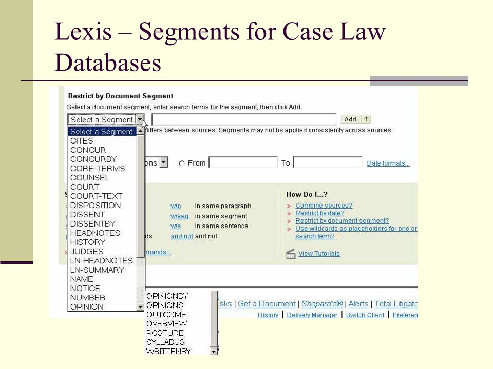 Lexis – Segments for Case Law Databases