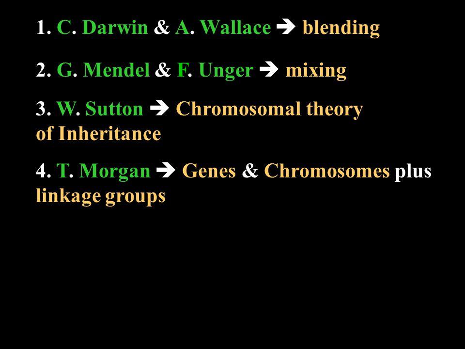 1. C. C. Darwin & A. A. Wallace  blending 2.