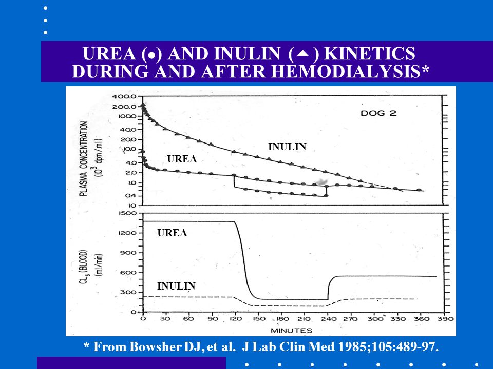 UREA (  ) AND INULIN (  ) KINETICS DURING AND AFTER HEMODIALYSIS* * From Bowsher DJ, et al.