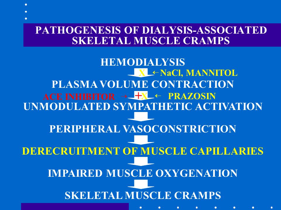 PATHOGENESIS OF DIALYSIS-ASSOCIATED SKELETAL MUSCLE CRAMPS HEMODIALYSIS PLASMA VOLUME CONTRACTION UNMODULATED SYMPATHETIC ACTIVATION PERIPHERAL VASOCONSTRICTION DERECRUITMENT OF MUSCLE CAPILLARIES IMPAIRED MUSCLE OXYGENATION SKELETAL MUSCLE CRAMPS X  NaCl, MANNITOL X  PRAZOSIN ACE INHIBITOR  +