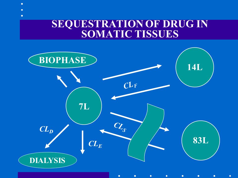 SEQUESTRATION OF DRUG IN SOMATIC TISSUES CL S 83L CL F 14L 7L CL E BIOPHASE CL D DIALYSIS