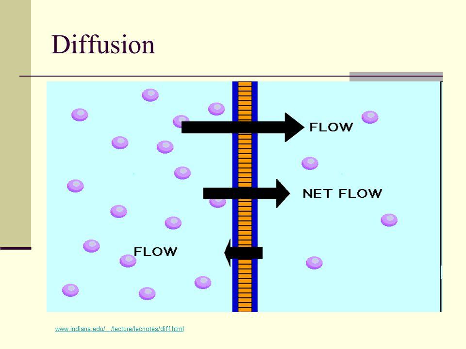 Diffusion www.indiana.edu/.../lecture/lecnotes/diff.html