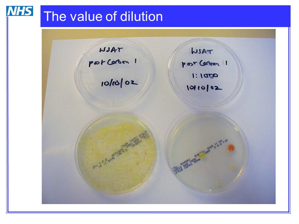 The value of dilution