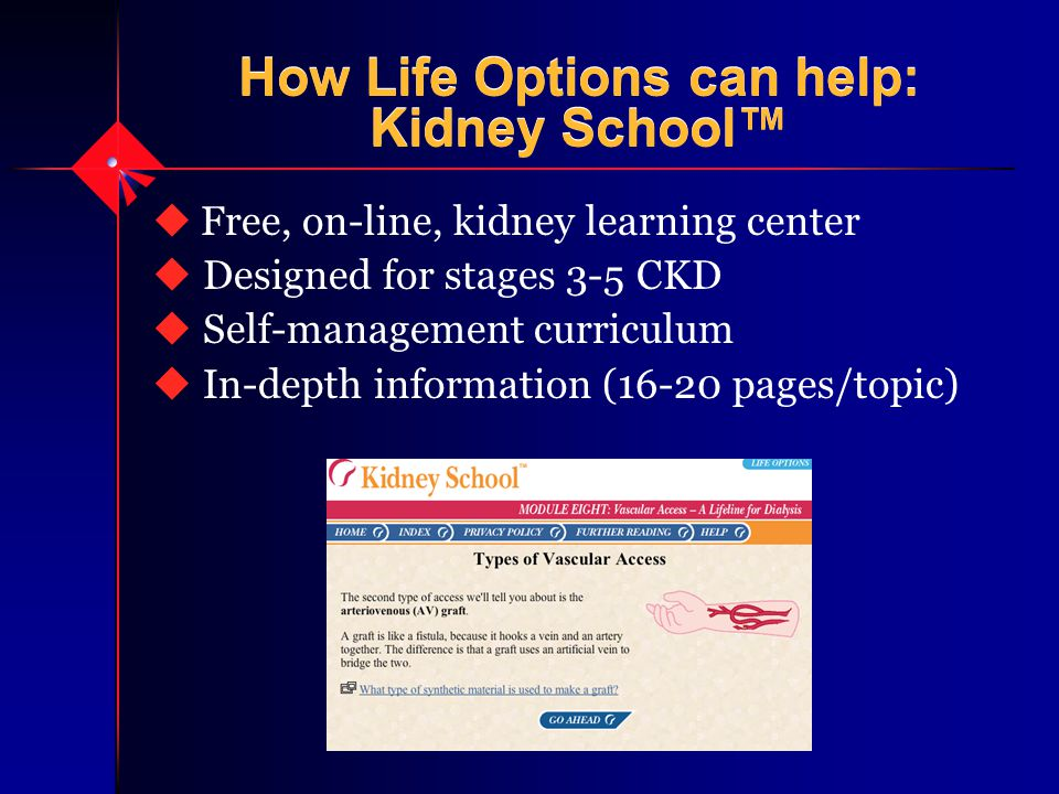 How Life Options can help: Kidney School™ u Free, on-line, kidney learning center u Designed for stages 3-5 CKD u Self-management curriculum u In-depth information (16-20 pages/topic)