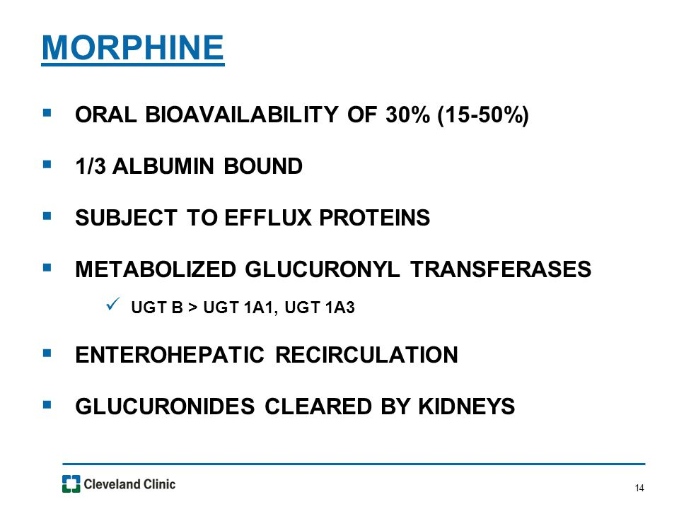 14  ORAL BIOAVAILABILITY OF 30% (15-50%)  1/3 ALBUMIN BOUND  SUBJECT TO EFFLUX PROTEINS  METABOLIZED GLUCURONYL TRANSFERASES UGT B > UGT 1A1, UGT 1A3  ENTEROHEPATIC RECIRCULATION  GLUCURONIDES CLEARED BY KIDNEYS MORPHINE