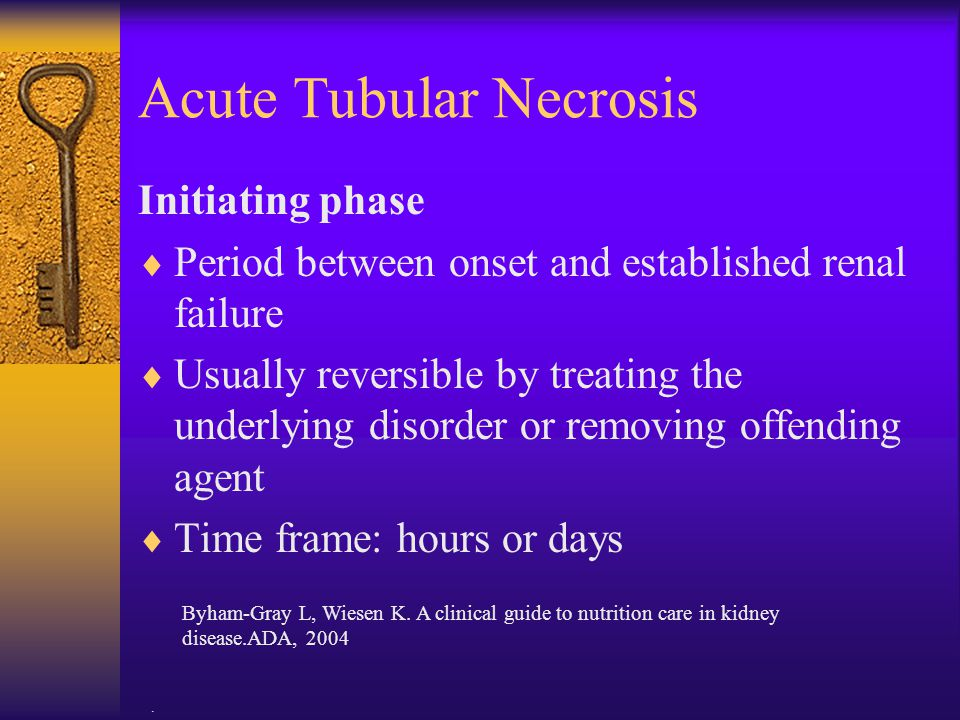 . Acute Tubular Necrosis Initiating phase  Period between onset and established renal failure  Usually reversible by treating the underlying disorde