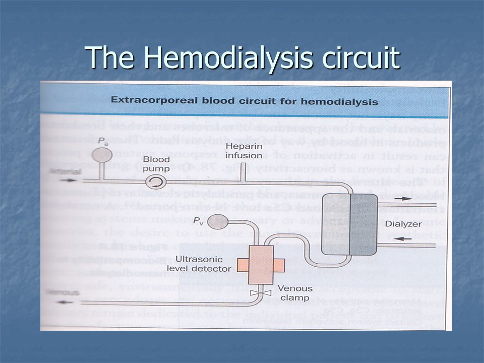 The Hemodialysis circuit