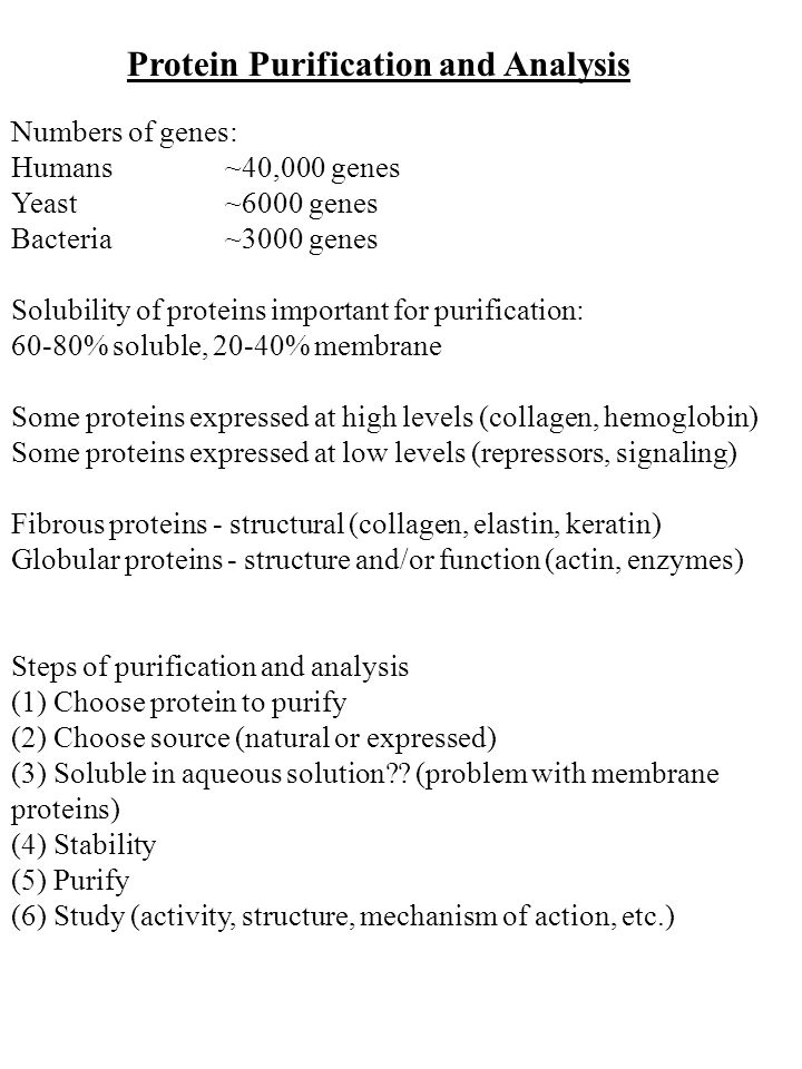 Protein Purification and Analysis Numbers of genes: Humans~40,000 genes Yeast~6000 genes Bacteria~3000 genes Solubility of proteins important for purification: 60-80% soluble, 20-40% membrane Some proteins expressed at high levels (collagen, hemoglobin) Some proteins expressed at low levels (repressors, signaling) Fibrous proteins - structural (collagen, elastin, keratin) Globular proteins - structure and/or function (actin, enzymes) Steps of purification and analysis (1) Choose protein to purify (2) Choose source (natural or expressed) (3) Soluble in aqueous solution .
