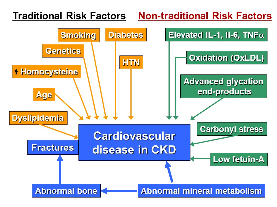 Abnormal bone Age Oxidation (OxLDL) Diabetes HTN Advanced glycation end-products end-products Smoking Genetics Dyslipidemia Carbonyl stress Low fetuin-A Traditional Risk FactorsNon-traditional Risk Factors Elevated IL-1, Il-6, TNF  Homocysteine Abnormal mineral metabolism Fractures Cardiovascular disease in CKD