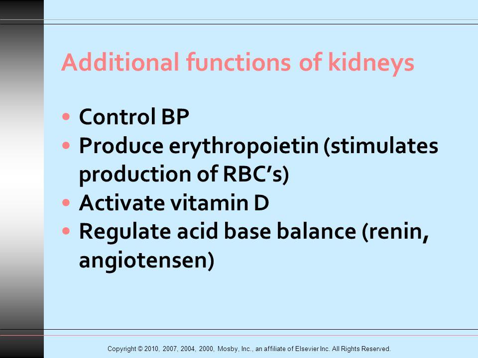 Hemodialysis System Fig.