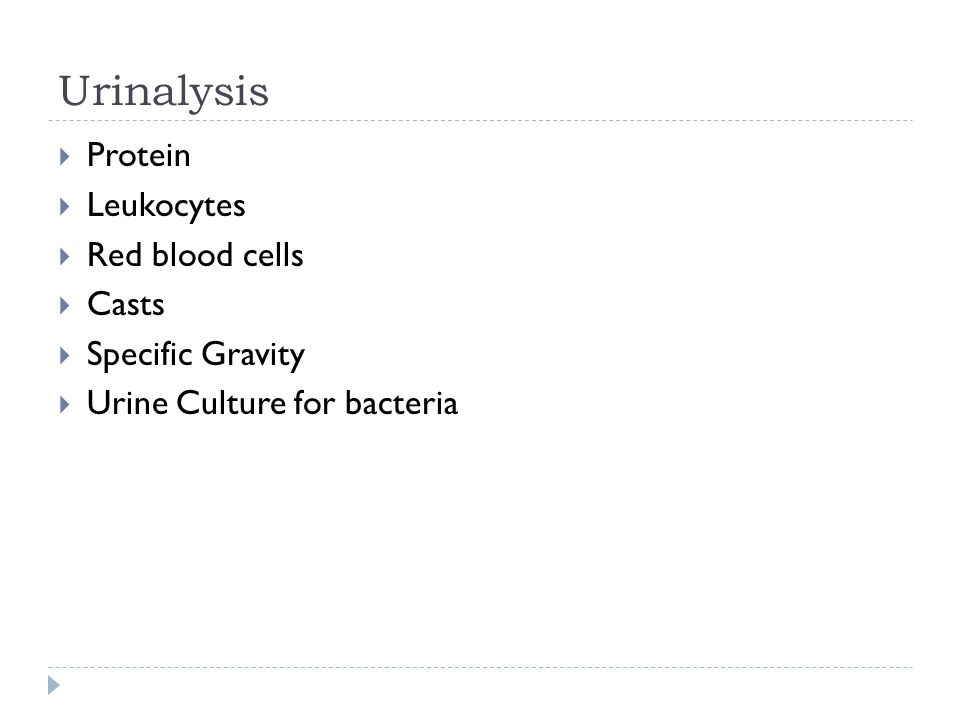 Urinalysis  Protein  Leukocytes  Red blood cells  Casts  Specific Gravity  Urine Culture for bacteria