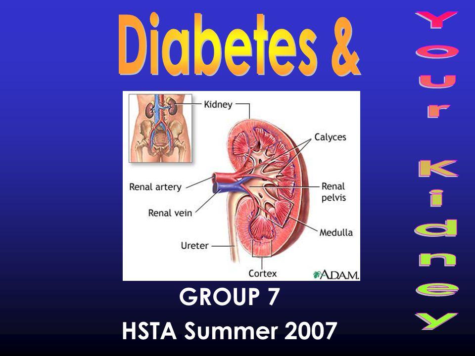 GROUP 7 HSTA Summer 2007