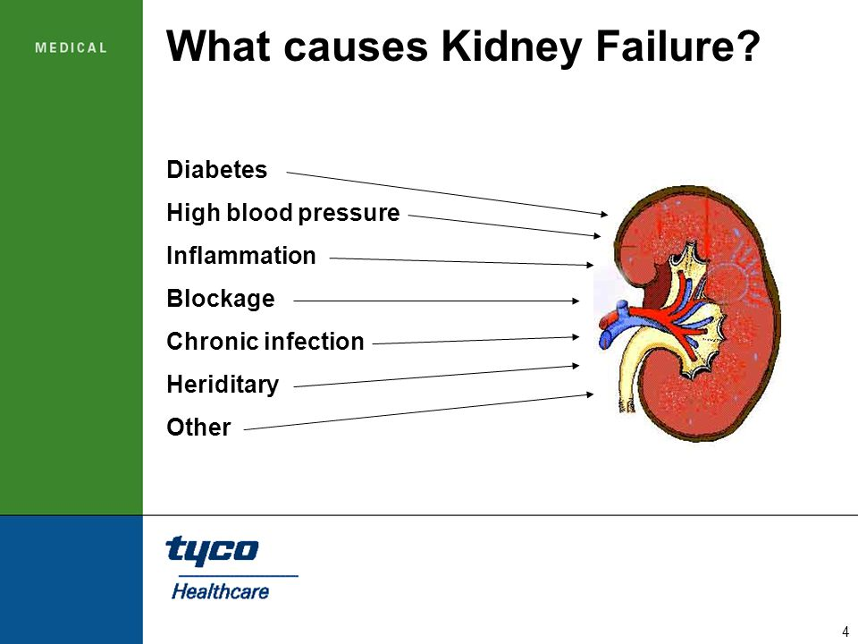 4 What causes Kidney Failure? Diabetes High blood pressure Inflammation Blockage Chronic infection Heriditary Other