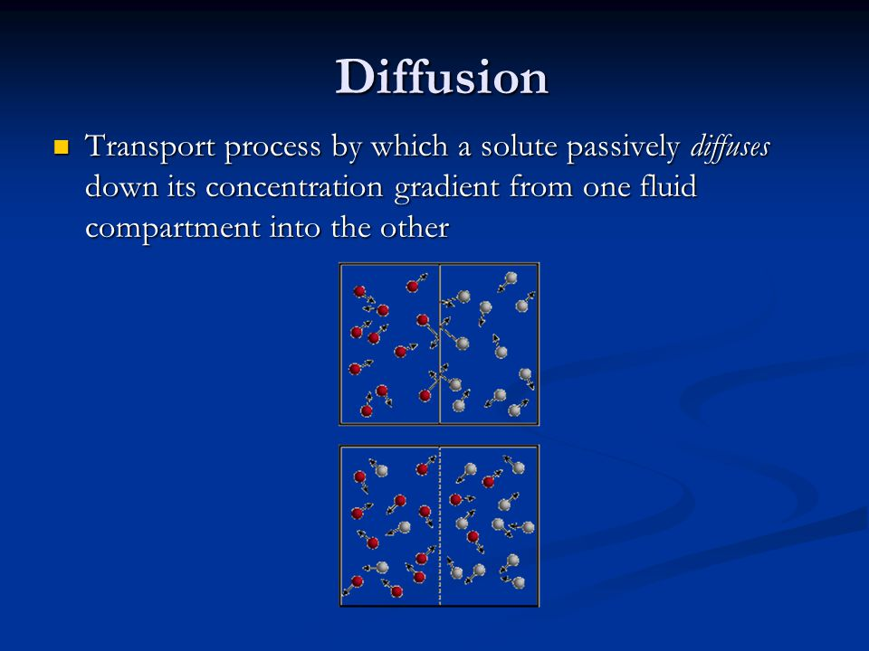 Diffusion Transport process by which a solute passively diffuses down its concentration gradient from one fluid compartment into the other Transport p