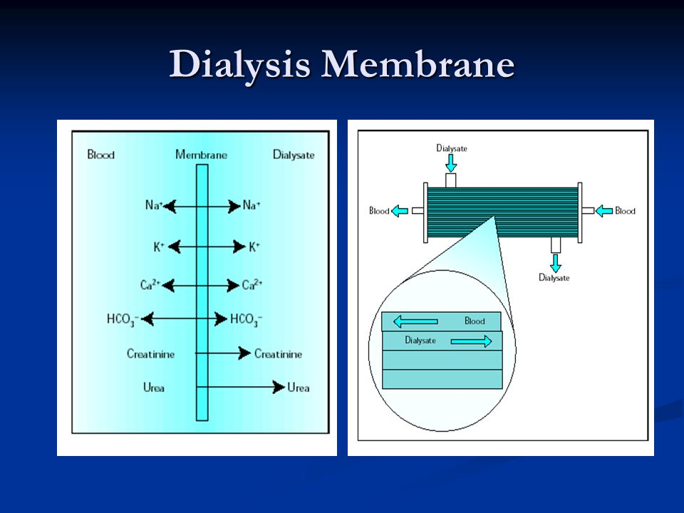 Dialysis Membrane