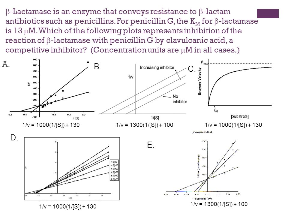 -Lactamase is an enzyme that conveys resistance to  -lactam antibiotics such as penicillins.