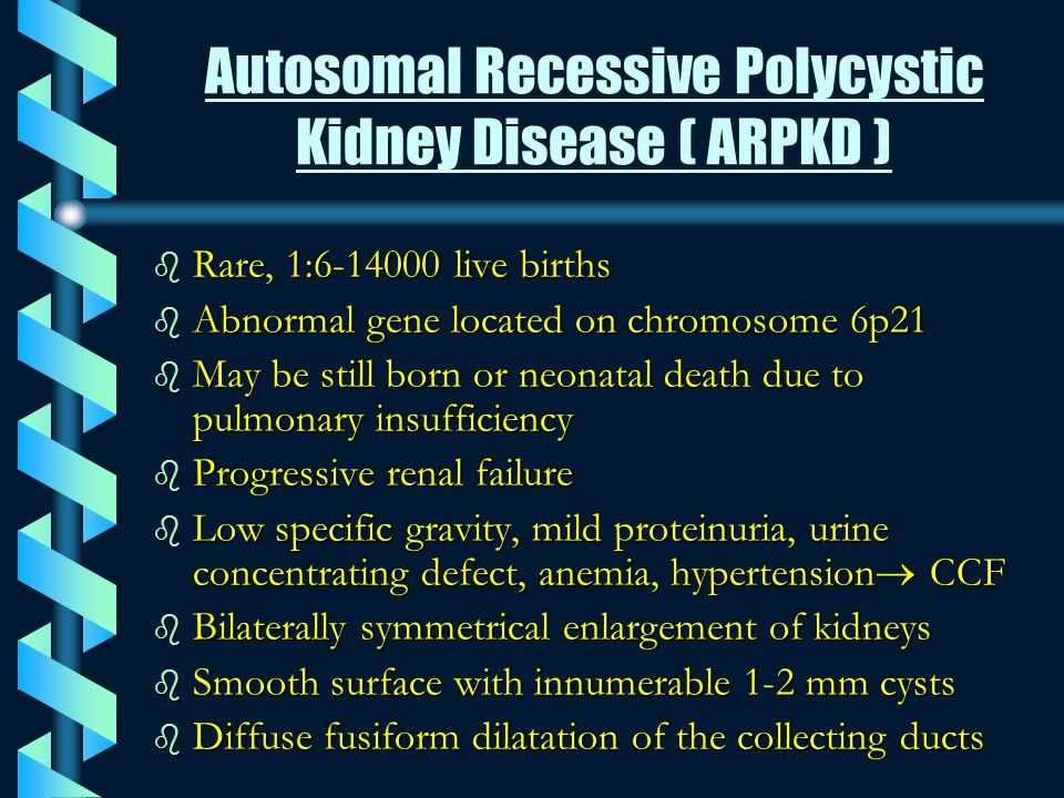 CLASSIFICATIONS OF RENAL CYSTIC DISEASES b Polycystic kidney diseases: 1.