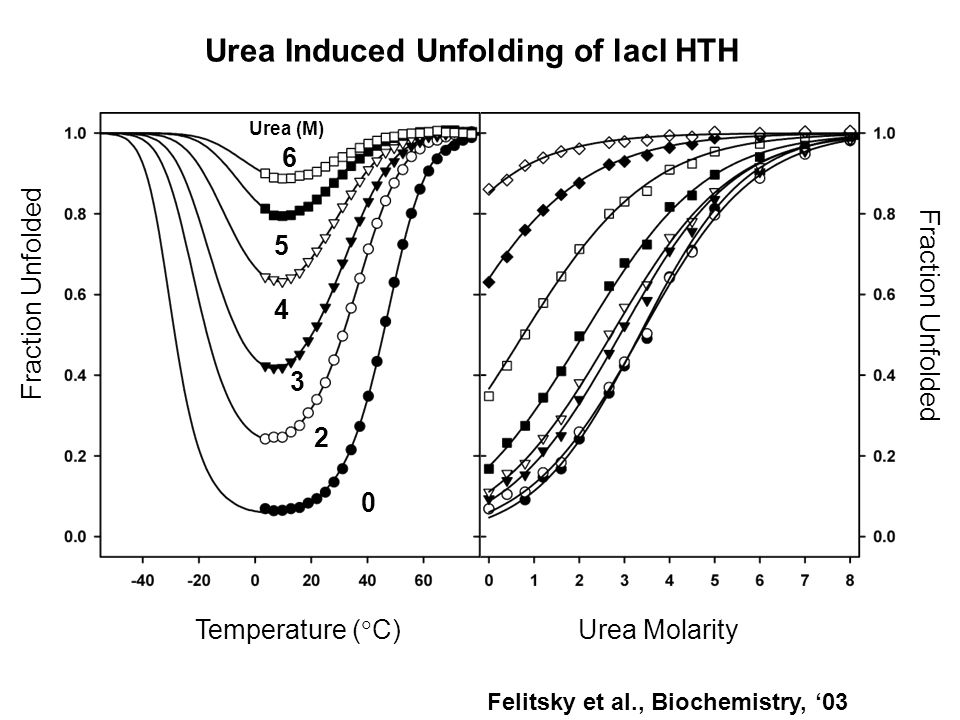 Urea Induced Unfolding of lacI HTH Temperature (  C) Urea Molarity Fraction Unfolded 0 2 3 4 5 6 Urea (M) Felitsky et al., Biochemistry, '03