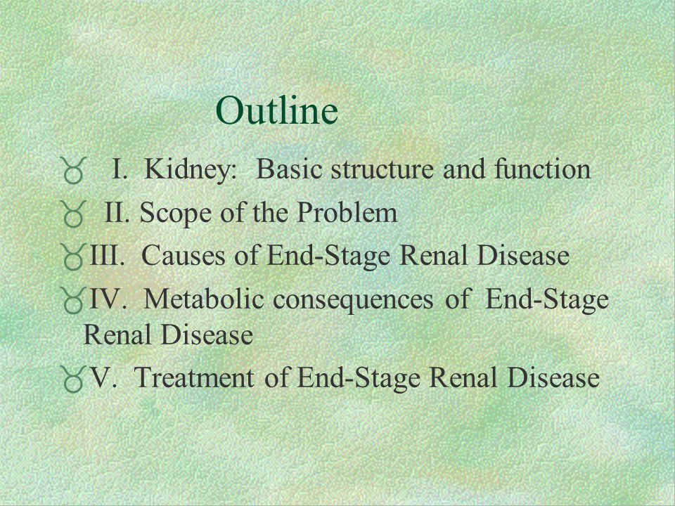 Outline  I. Kidney: Basic structure and function  II.