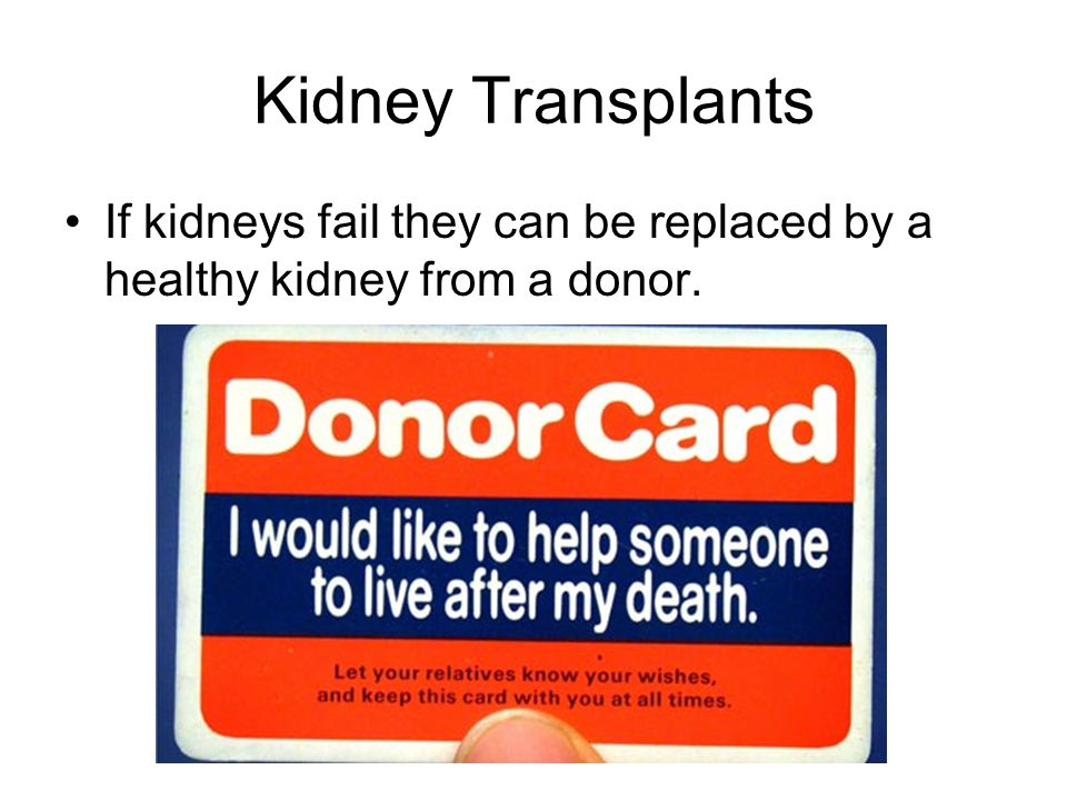 Kidney Transplants If kidneys fail they can be replaced by a healthy kidney from a donor.