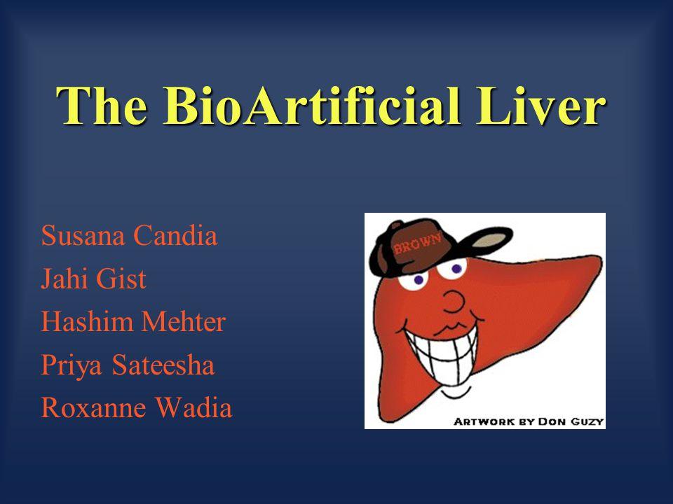 The BioArtificial Liver Susana Candia Jahi Gist Hashim Mehter Priya Sateesha Roxanne Wadia