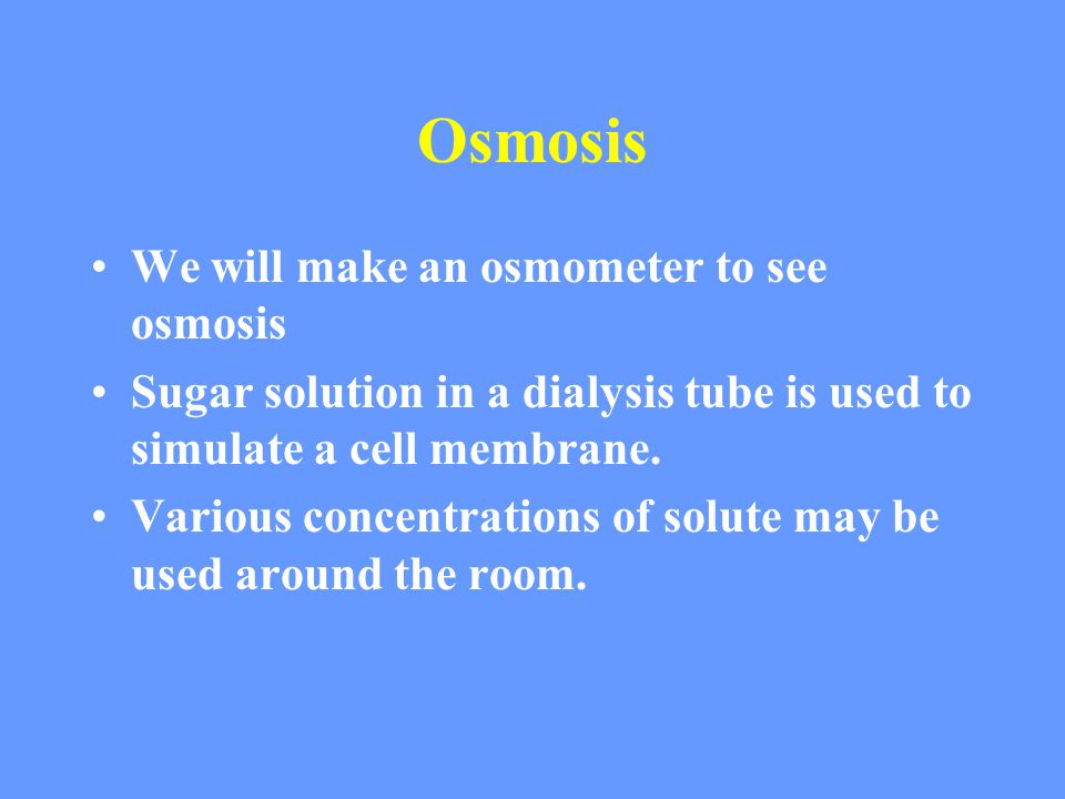 Osmosis We will make an osmometer to see osmosis Sugar solution in a dialysis tube is used to simulate a cell membrane.