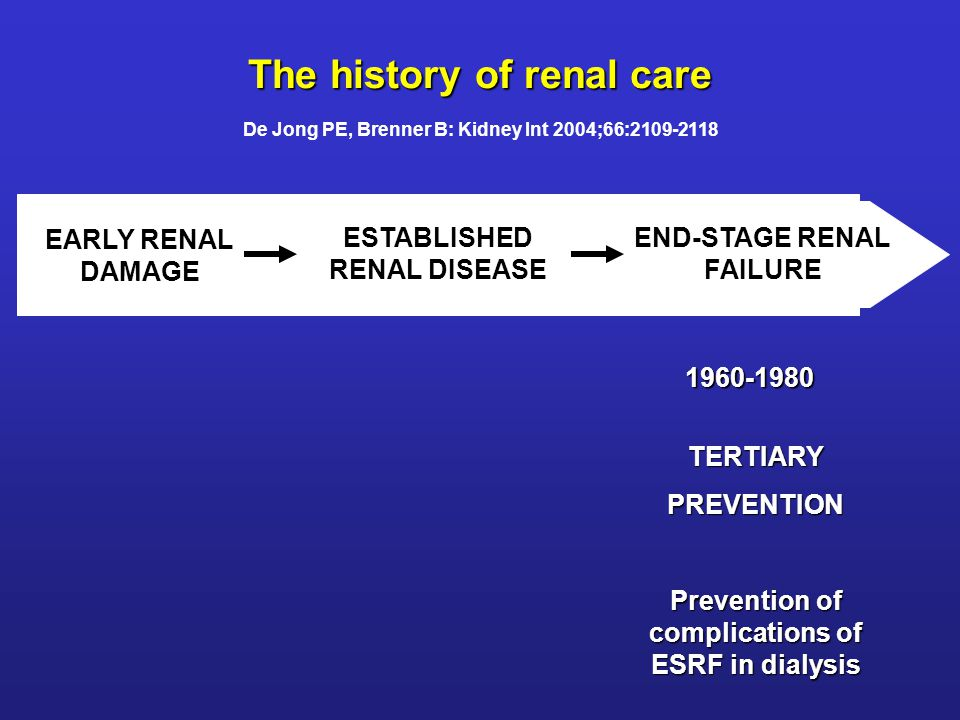 EARLY RENAL DAMAGE ESTABLISHED RENAL DISEASE END-STAGE RENAL FAILURE TERTIARYPREVENTION Prevention of complications of ESRF in dialysis SECONDARYPREVENTION Prevention of progression to ESRF 1960-1980 1980-2000 The history of renal care De Jong PE, Brenner B: Kidney Int 2004;66:2109-2118